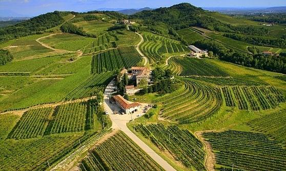 Una veduta della tenuta Torre Rosazza, in Friuli, di Genagricola