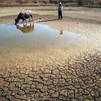 Siccità,  anno record per gli aiuti d'emergenza ai bambini per l'aridità della terra, guerre e malnutrizione