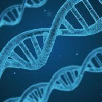 Un passo avanti contro il tumore ovarico avanzato