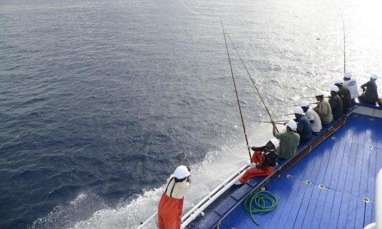 """Rio mare: """"Sempre più tonno dalla pesca sostenibile"""""""