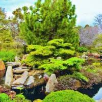 Fuga nel verde inaspettato: i giardini 'segreti' delle grandi metropoli