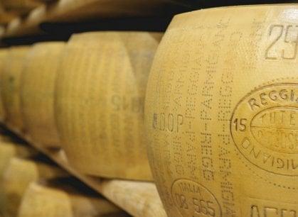 Dalle figurine al Parmigiano: ora Panini è una fattoria modello (e un museo)