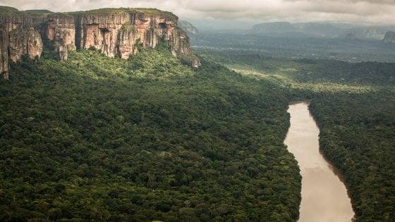 La Colombia salva il suo cuore verde: il più grande parco di foresta pluviale è patrimonio Unesco