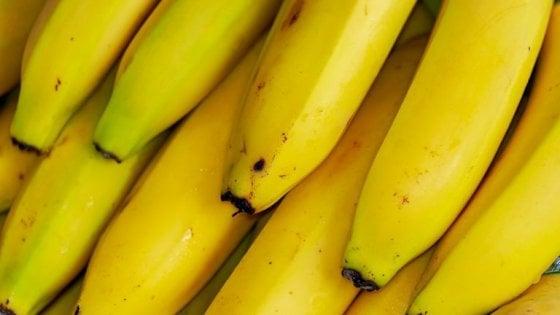 Un mondo senza banane: il frutto rischia l'estinzione