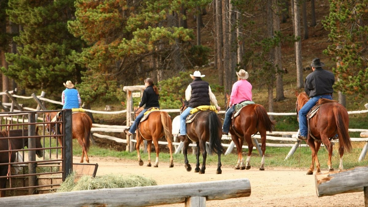 una vacanza da cowboy anche nel ranch vicino a casa