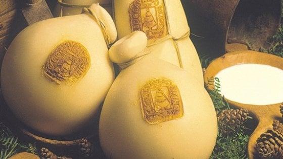 Tartufi, bollicine e formaggi. E' la Francia? No, la Sila, cuore verde della Calabria