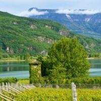 Montagne, vigneti e ristoranti: il lato bello (e buono) dell'Alto Adige