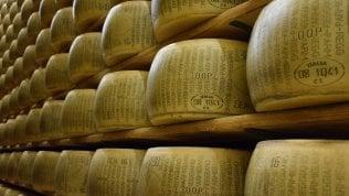 """Lotta Onu a grassi e sale: il parmigiano come le sigarette. """"Mettete l'etichetta: 'Nuoce alla salute'"""""""