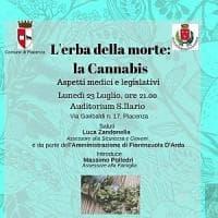 """""""L'erba della morte"""", il convegno leghista sulla cannabis fa discutere"""