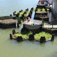 E la plastica raccolta nel fiume diventa un'isola verde per la città