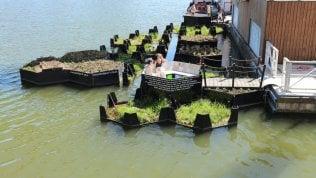La plastica raccolta nel fiume diventa un'isola verde per la città