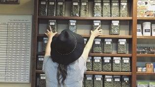 Come nel film 'L'erba di Grace':anziani, boom di cannabis light