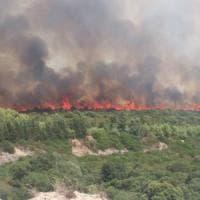 Incendi, case evacuate in provincia di Cagliari e Palermo