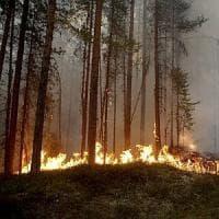 Il Polo Nord brucia. Emergenza incendi in Svezia