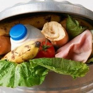 Spreco alimentare, italiani più sensibili: ma ognuno getta via 3 chili di prodotti al mese