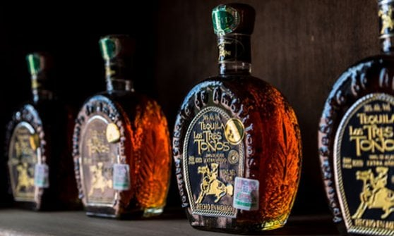 Antica, incandescente, versatile: festeggiamo la Tequila