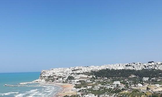 Tra mare, foreste e memorie antiche. Costa adriatica on the road
