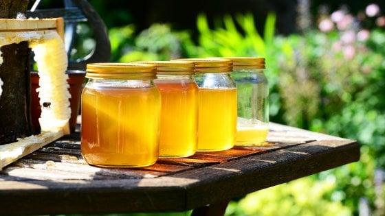 Caldo e bombe d'acqua, dimezzata in Italia la produzione di miele