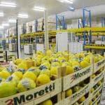 """Italianità, i consumatori apprezzano l'orgoglio """"scolpito"""" in etichetta"""