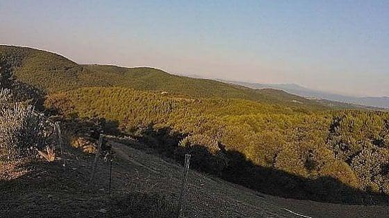 """Umbria, il Monte Peglia ottiene il titolo di riserva dell'Unesco: """"Un sogno diventato realtà"""""""