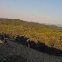 Umbria, il Monte Peglia ottiene il titolo di riserva dell'Unesco: