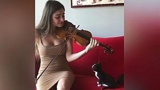 Come in un film Disney:violinista strega il gattino