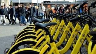 Bike sharing, tutti i numeri di un successo