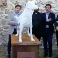 Catanzaro, un monumento per il cane Angelo
