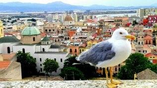 Le vacanze delle Meraviglie,l'Italia raccontata dai vostri scatti