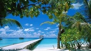 """Lavori """"estremi"""": cercasi libraio per resort di lusso alle Maldive"""
