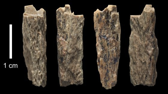 Mamma di Neanderthal, padre di Denisova: trovata l'erede dei due gruppi di ominidi