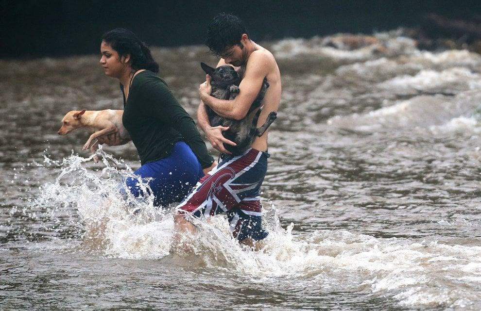 Hawaii, si cerca scampo dall'uragano Lane. Piogge torrenziali e rischio frane, chiusi anche i set cinematografici