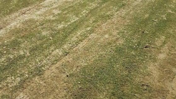 Serie B: campo indecente, Cosenza-Verona non si gioca