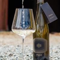 Il primo vino bianco italiano