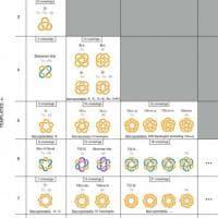 La 'tavola periodica' con tutti i nodi molecolari del mondo