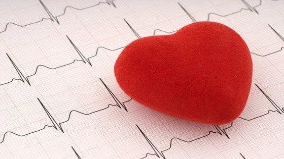 """""""Cuore domani"""", 10 borse di studio per la ricerca cardiovascolare"""