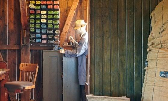 Tettnang: dove il luppolo è di casa, dai campi alla bottiglia