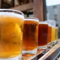 Monfalcone, solo birra calda nei negozi contro i bivacchi in centro: l'ultima trovata della sindaca leghista