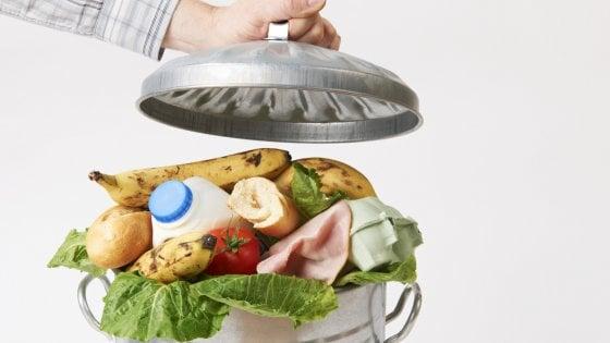 Spreco di cibo, ogni anno nel cestino vanno 1.200 miliardi di dollari