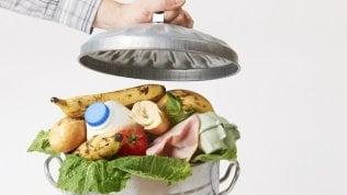 Spreco di cibo, ogni anno nel cestino 1.200 miliardi di dollari