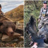 Posta su Twitter le foto del grizzly e dell'alce uccisi: ex giocatore di hockey scatena...