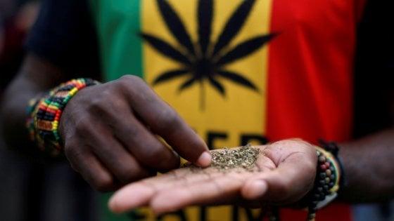 Il Sudafrica depenalizza la marijuana per uso personale: è il primo Paese del continente