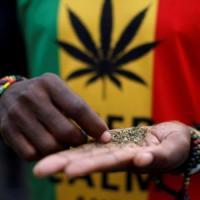 Il Sudafrica depenalizza la marijuana per uso personale: è il primo Paese