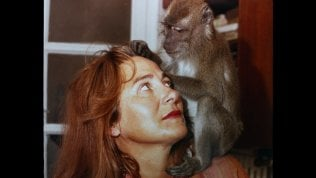 'Sei figli, una scimmia e un castello', storia di un'ottantenne per raccontare la Spagna
