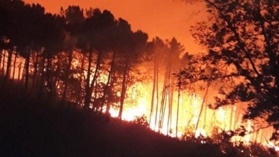 """Incendio nel Pisano, il sindaco di Calci: """"Evacuate cin"""