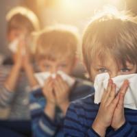 Allergico un italiano su 4, la metà viene curata male