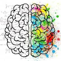 Cervello, ecco i neuroni dei numeri: così ci aiutano a contare