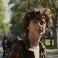Quel 'Beautiful Boy' di Timothée
