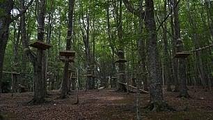 Il bosco dei partigiani -   ft