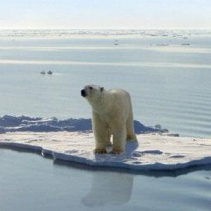 Allarme clima, temperature mondiali +1,5 gradi nel 2040